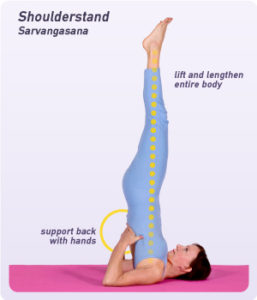 Svadhisthana Shoulder Stand